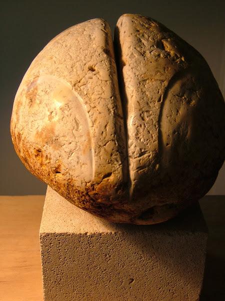 Salagrama stone   chert