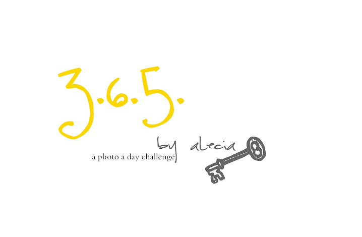 Alecia's 365 challenge