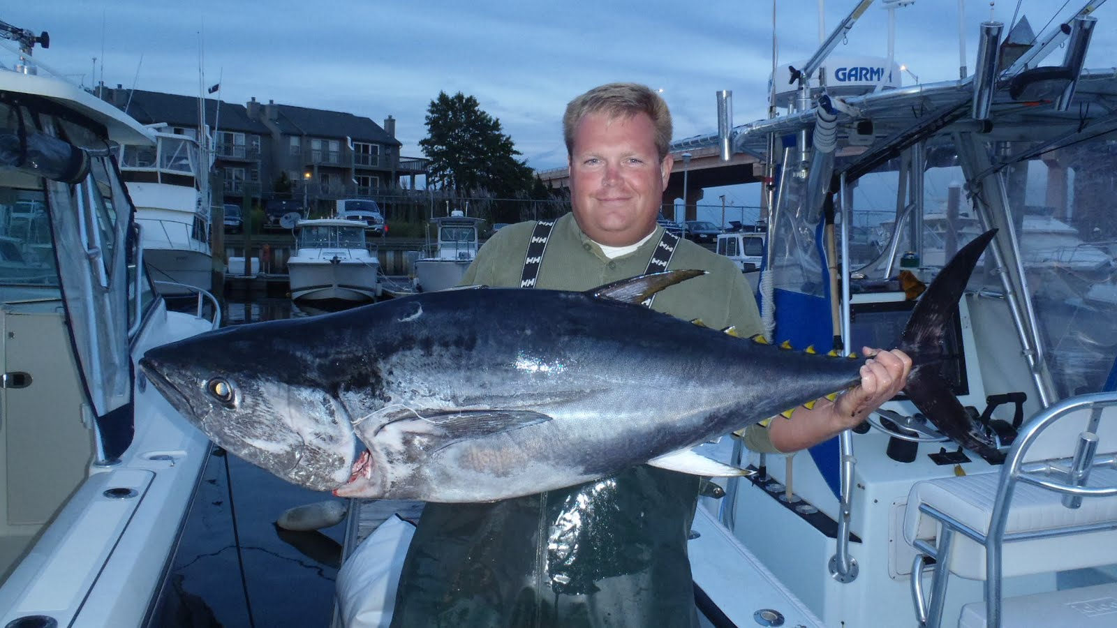 Shark inlet charters belmar nj fishing charter reports for Tuna fishing charters nj