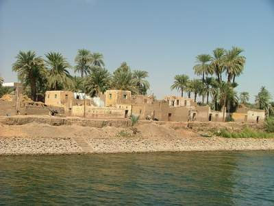 Banks of river Nile