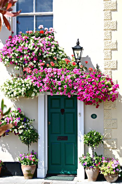 window boxes, hanging baskets, and pots