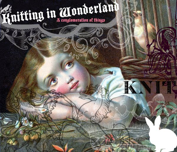 knitting in wonderland