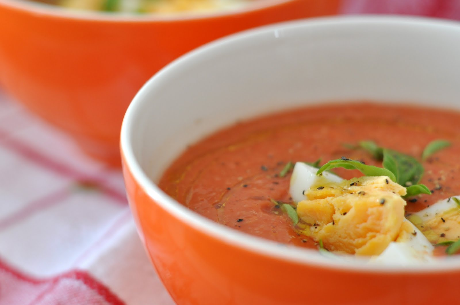 Agata 39 s kitchen salmorejo cold tomatoes soup for Soup for a cold