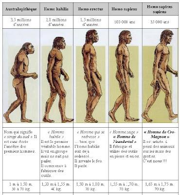 http://3.bp.blogspot.com/_VG3J9FgHAwE/SPIlS0S_KbI/AAAAAAAAEOg/qAjM9Q3vNok/s400/%C3%A9volution-de-l%27homme.jpg