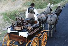 Fête de la Madeleine à Beaucaire (30)