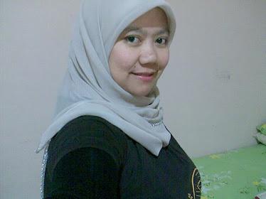dis 2008