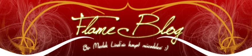 Flame Blog's