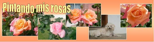 Pintando mis rosas