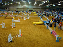 View of the Agility Rings