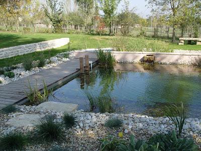L 39 antre d 39 un panda les piscines cologiques for Prix piscine biologique