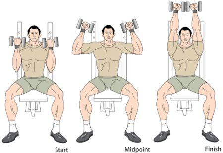 dumbbell shoulder press incline dumbbell press