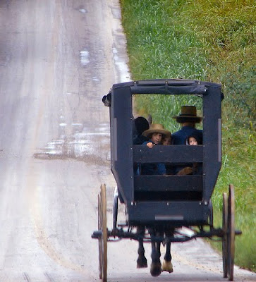 LSAT Blog Amish Horse Carriage