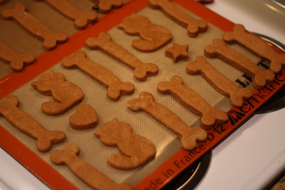 diy dog biscuits