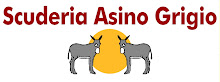Buy Scuderia Asina Grigio Teamware!