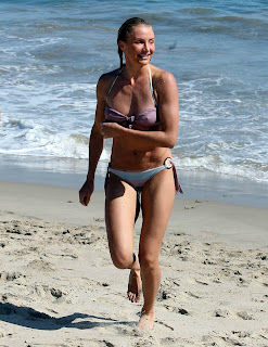 Cameron diaz bikini 3 image