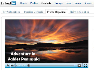 Follow the adventure in Valdes Peninsula Patagonia Argentina on LinkedIn