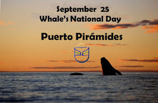Whale National Day in Puerto Piramides Valdes Peninsula Patagonia Argentina