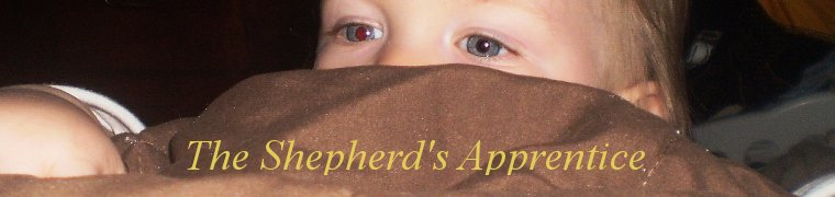 The Shepherd's Apprentice