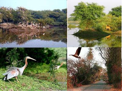 Bharatpur National Park