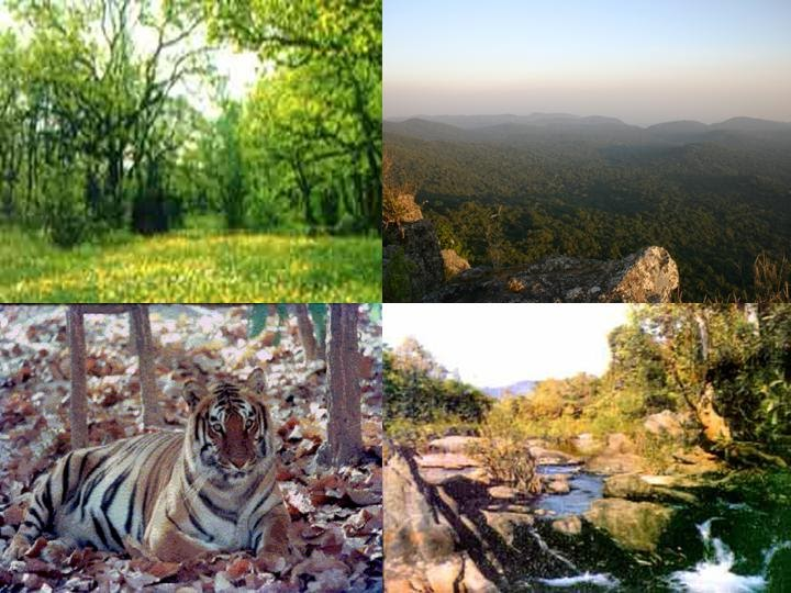 INDIA ON WHEELS - A trip for pleasure!: Gokarna