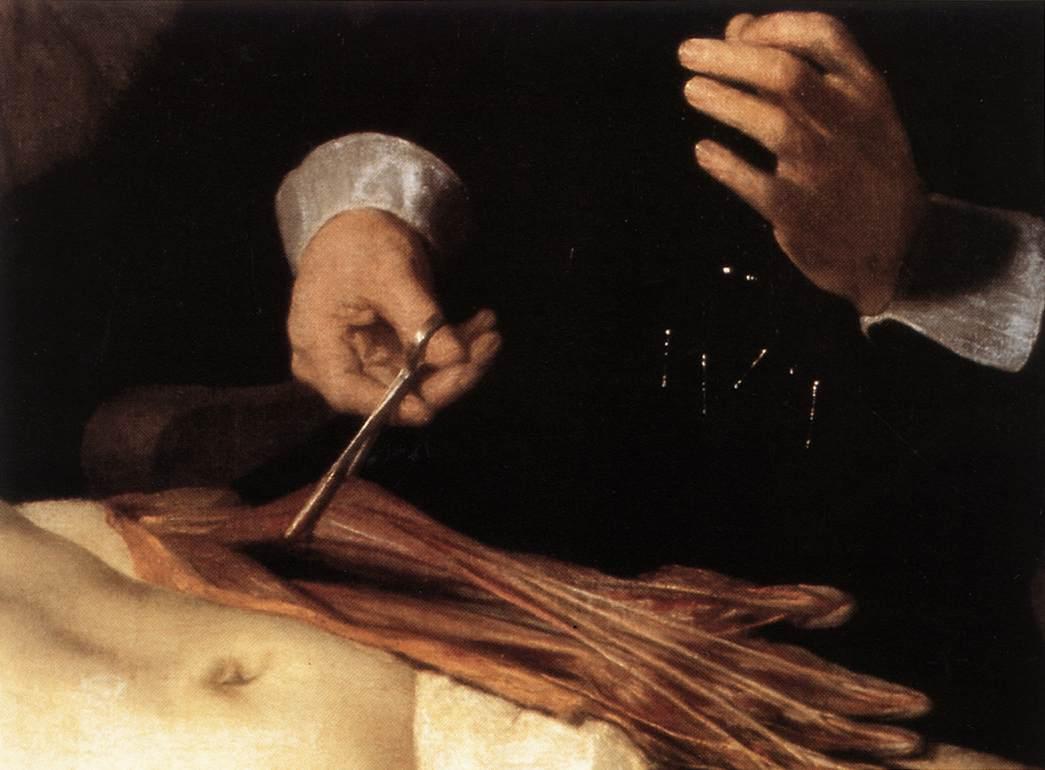 Qué nos queda: ¿Lección de anatomía?