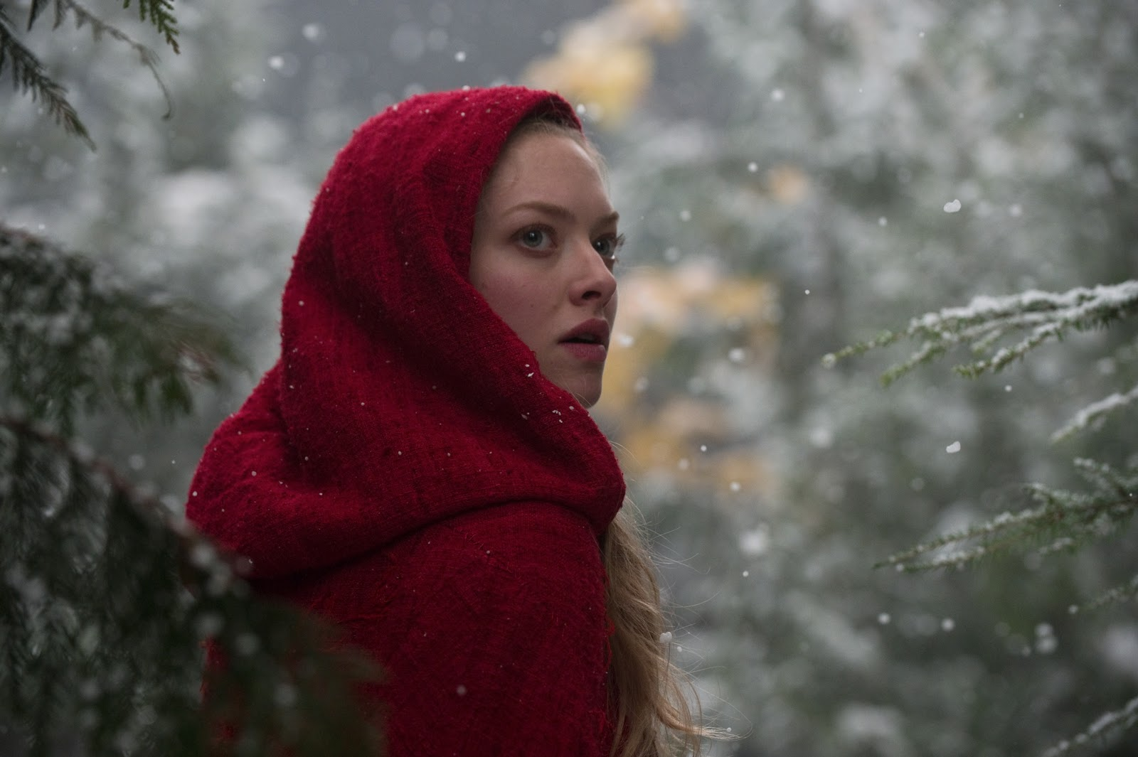 http://3.bp.blogspot.com/_VbI2qfEJLI4/TPDOJ42PyVI/AAAAAAAAHYs/d-cCPiajgbw/s1600/red_riding_hood_movie_image_amanda_seyfried.jpg