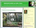 BLOG DE EDITH CHECA