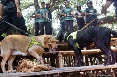 http://3.bp.blogspot.com/_Vc9VvIqNhJY/S8SKVSyj4EI/AAAAAAAAMTI/J92U0c0Eoao/s1600/Ramna_Park_Security_Dog_squad.jpg