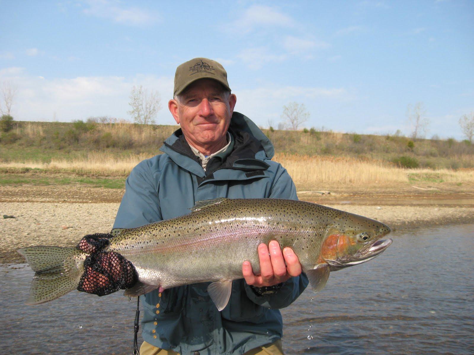 Pa ohio steelhead guides fly fishing reports fly tying for Fly fishing for steelhead