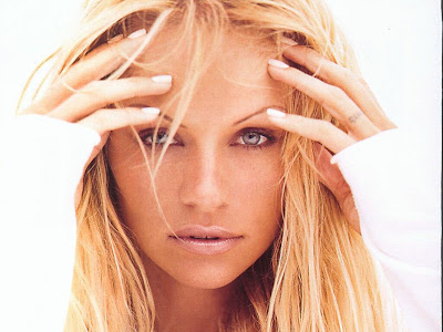 Hot Sexy Pamela Anderson  Pictures
