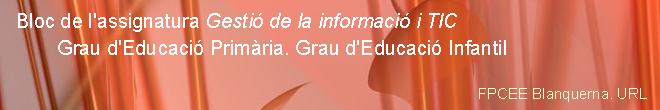 Gestió de la Informació  i TIC