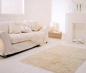 Home Decor Area Rugs