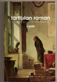 """Roman üzerine bir kitap : """"tartışılan roman"""""""