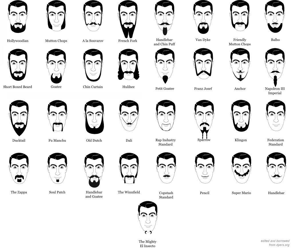 beardtypes.jpg