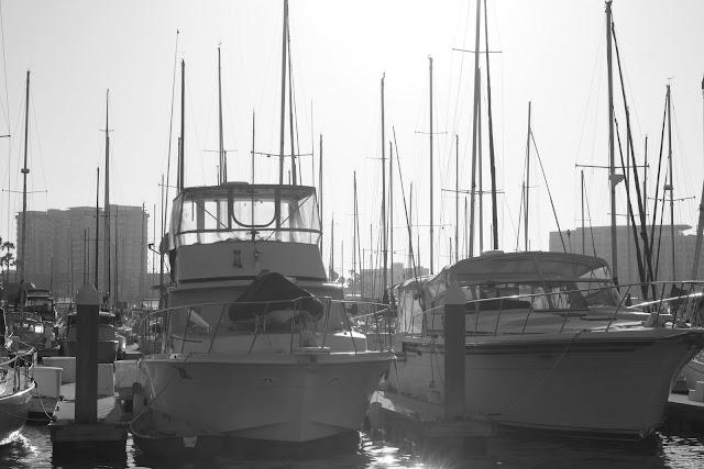 marina del rey boat