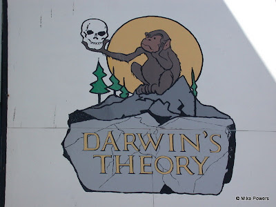 Darwin's Theory Bar, Anchorage, AK