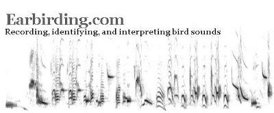 earbirding.com header