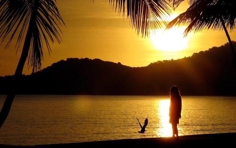 Buna dimineata,Soare!Buna dimineata,Pescarus!Buna dimineata,Iubire!