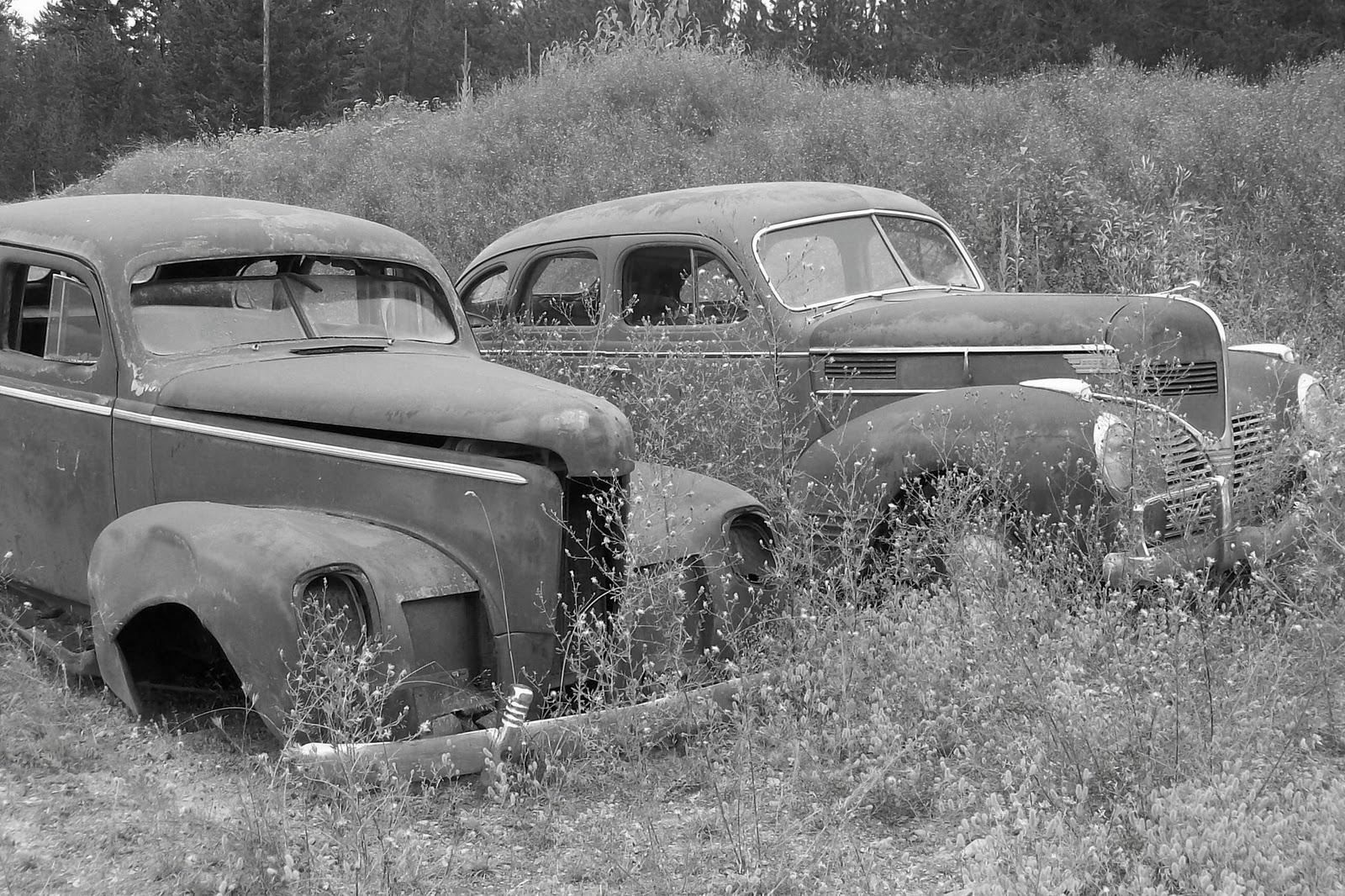 Junk Addiction: Rusty Fenders