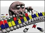 http://3.bp.blogspot.com/_VjhZVizBKfI/SXd9_W6AJGI/AAAAAAAAAA8/bjYwoGAiYUg/S150/polimerase2.jpg