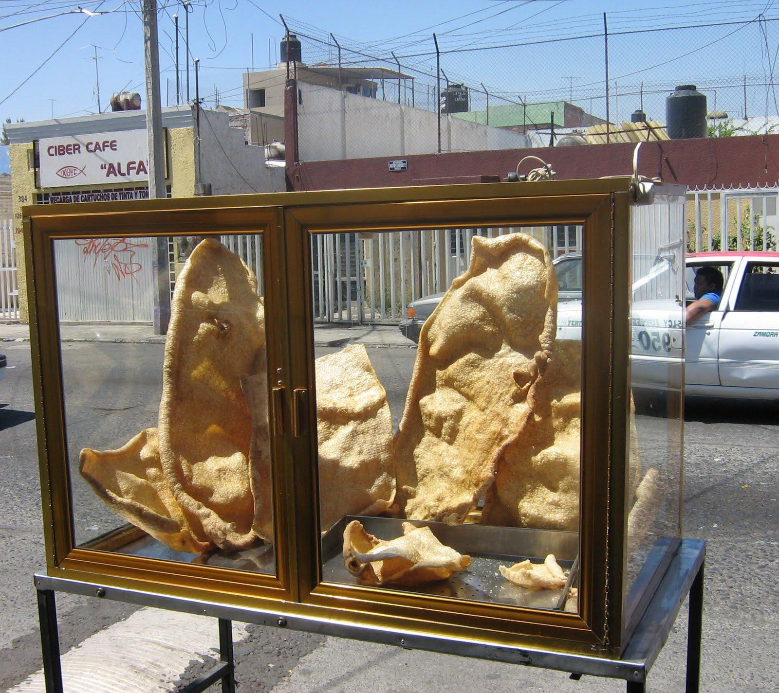 Meerkat meanderings may 2010 for Exterior display case