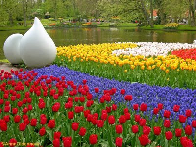 PINTURA: El Paisaje Jardin+de+tulipanes