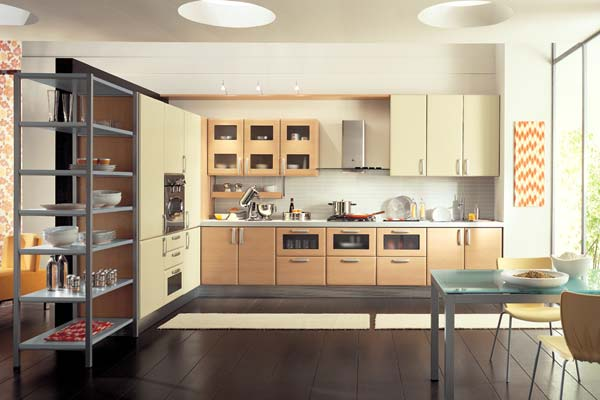 Apartment Kitchen Design Ideas Pictures
