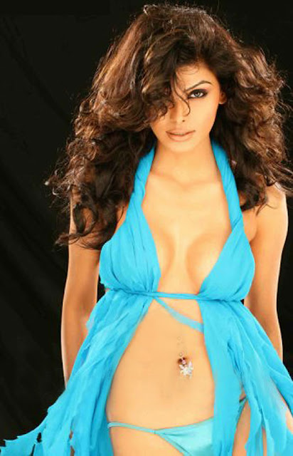 HoT and SpicY stills of Sherlyn Chopra