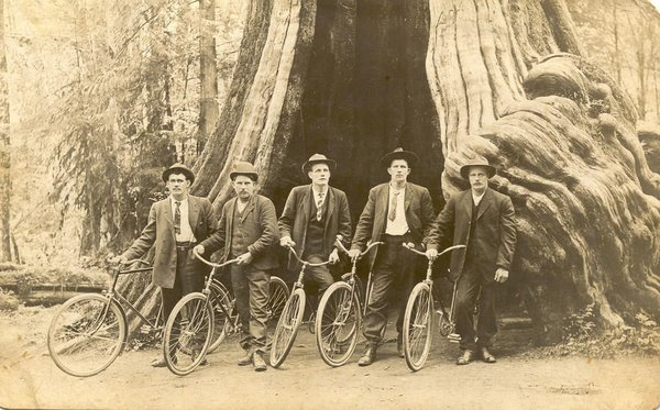 Pioneer cyclists in the Hollow Tree.