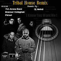 Dj mehdi i know you want me tribal house remix ahang for Tribal house tracks