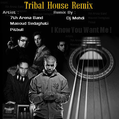 Dj mehdi i know you want me tribal house remix ahang for Tribal house songs