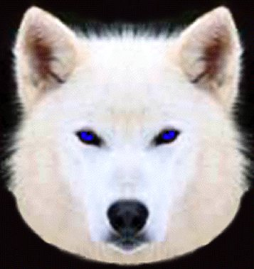 White Wolf Logo Blue eyes