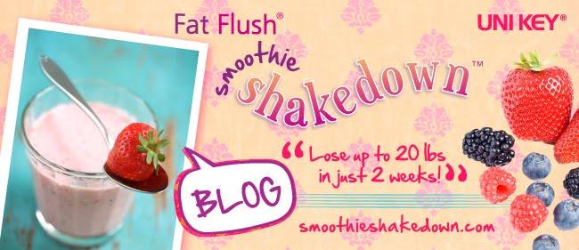 Shakedown Success