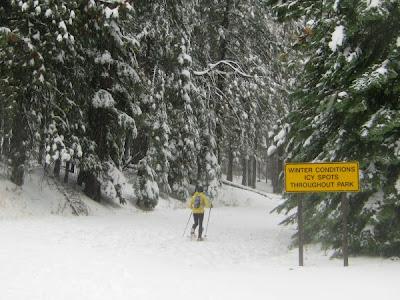 Yosemite snowshoe running